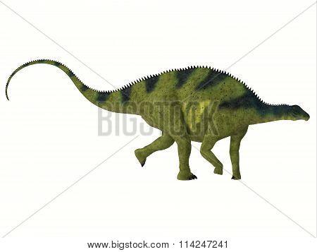 Brachytrachelopan Side Profile