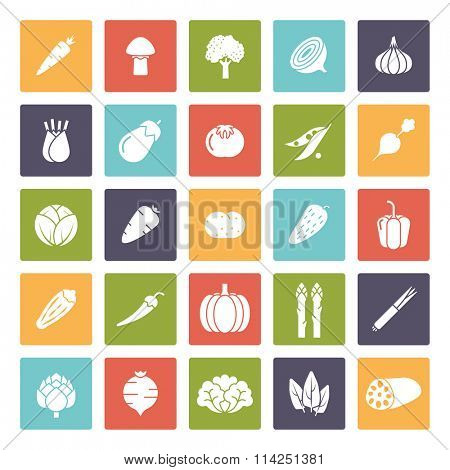 Vegetable icons set, negative in colored squares