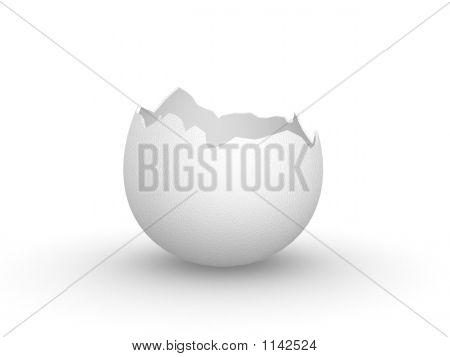 Eggshell Broken Empty