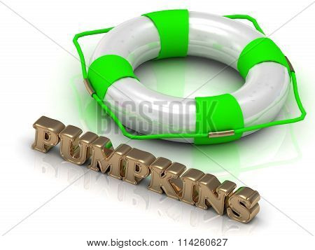 PUMPKINS - bright gold letters and color life buoy on a white background