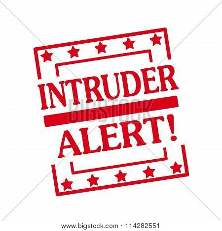INTRUDER ALERT red stamp text on squares on white background poster