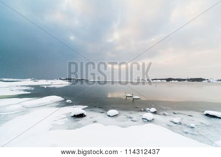 Snowy Nordic Landscape with Rocks and Swans, Snowing
