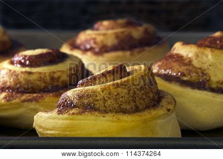 Cinnamon rolls baking in a convection oven