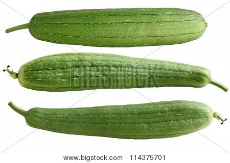 Set of three Sponge Gourd Vegetable Sponge( Luffa cylindrica) isolated on white background