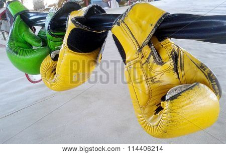 Boxing Gloves Hangs Off Ring