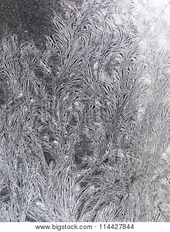 Frosty Pattern On Glass.