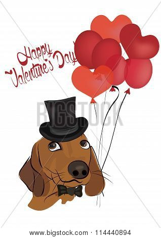 Valentine's Greeting Card with  Cute Dachshund Dog