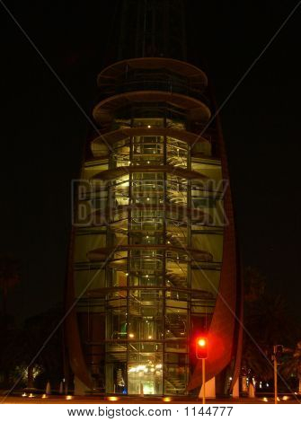 Night Swan Bells Tower