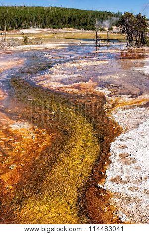 Algae Runoff from Hot Spring