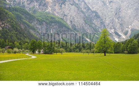 Logarska dolina/ Logar valley, Slovenia