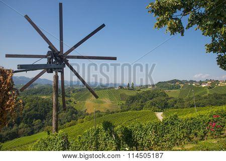 Wine road, Maribor, Slovenia