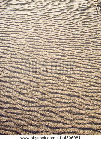 An Ocean Of Sand