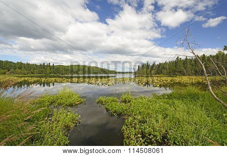 Narrow Channel In A Wilderness Lake