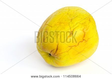 Green old and shrivelled apple isolated over white.Closeup