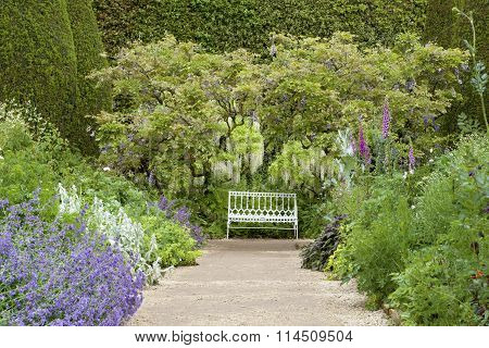 summer garden path with cottage flowers in bloom