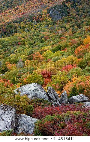 Fall Colors Along The Blue Ridge Parkway