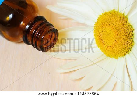 Cosmetic oil and  white daisy