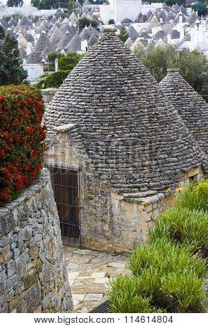 Alberobello, Apulia: the ancient district of the trulli. Unesco site