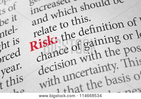 Definition Of The Word Risk In A Dictionary