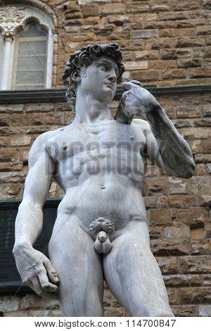 David Statue By Michelangelo Buonarroti, Florence, Italy