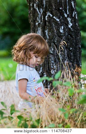 Cute Little Girl Near Birch Tree