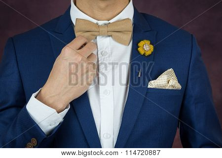 Man In Blue Suit Bowtie, Brooch, Handkerchief