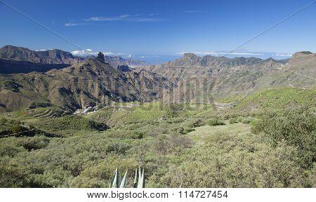 Gran Canaria, Caldera De Tejea, January