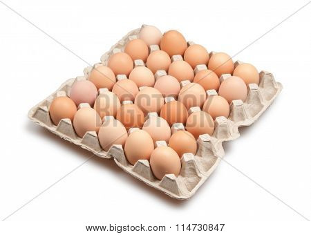 many brown eggs isolated on white