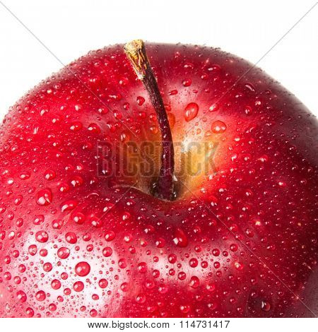wet red apple isolated on white
