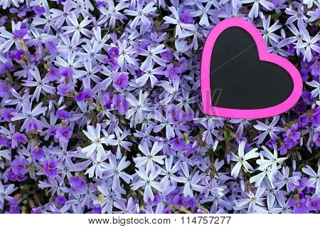 Pink Heart With A Violett Flower Background