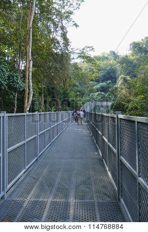 Gray Metal Walkway In The Park