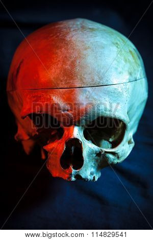 Human skull For tattoo on black background.Halloween background