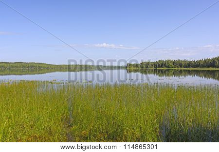 Blues Skies Over An Open Lake