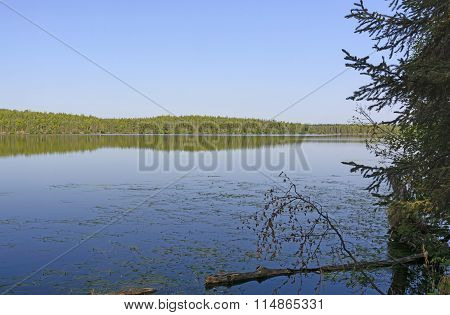 Early Morning On A Wilderness Lake