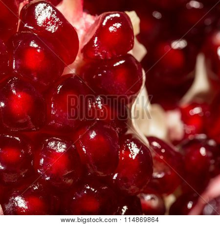 Macroshooting Of Grains Of Ripe Pomegranate