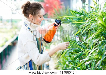 Beautiful cheerful young woman gardener in colorful apron spraying flowers and plants using water pulverizer in garden center