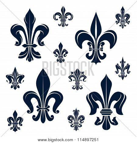 French fleur-de-lis heraldic symbols and flowers