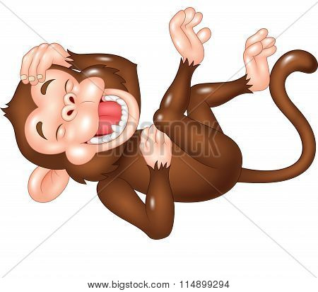 Cute monkey laughing isolated on white background
