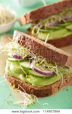 healthy avocado sandwich with cucumber alfalfa sprouts onion