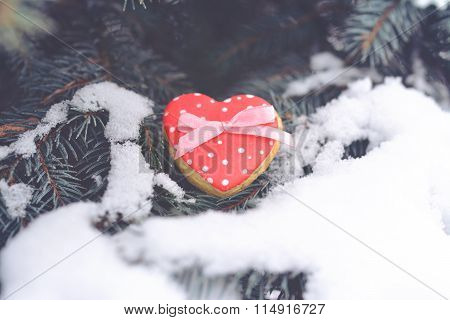 Red Heart at the Evergreen Tree