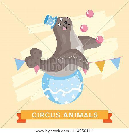 Circus Seals, vector animal series.