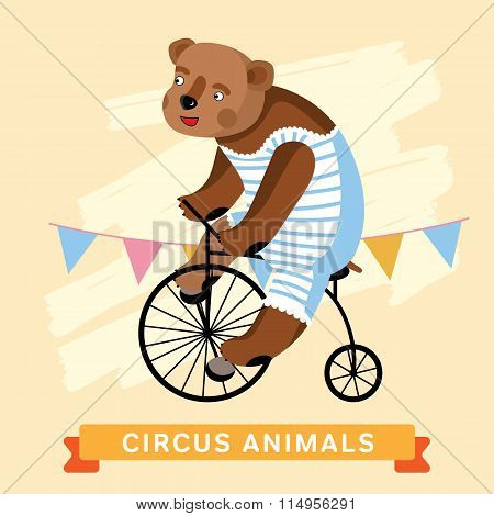 Circus Bear, vector animal series.