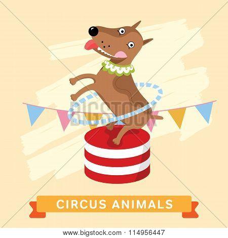 Circus Dog, vector animal series.