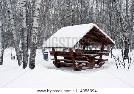 Alcove Covered With Snow Horizontal