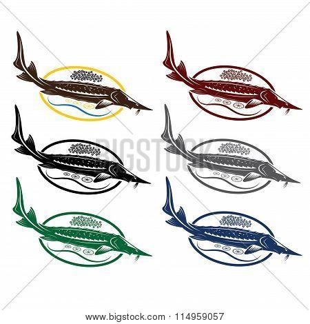 Sturgeon Fish With Caviar And Lemon On Plate
