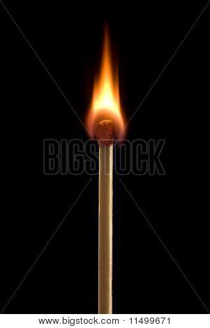 Sharp Flame