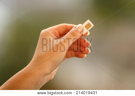 female hand holding white SIM card on blured background