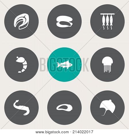 Collection Of Stingray, Shell, Clam And Other Elements.  Set Of 9 Seafood Icons Set.