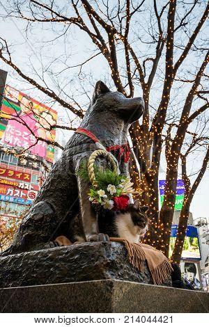 Hachiko Statue In Shibuya Tokyo