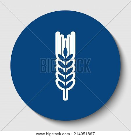 Wheat sign illustration. Spike. Spica. Vector. White contour icon in dark cerulean circle at white background. Isolated.